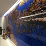 Houston Custom Vinyl Wall Murals IMG 4744 150x150